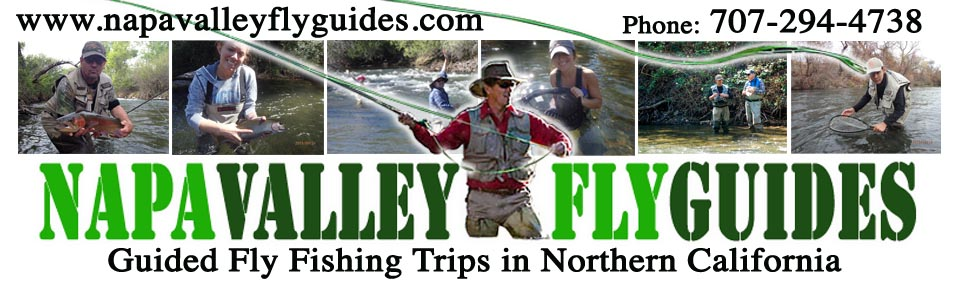 Putah Creek Fly Fishing Guide Richard Loft of Napa Valley Fly Guides, offers fly fishing trips and fly fishing instruction on Putah Creek and the Yuba River in the famous Napa Valley, California.
